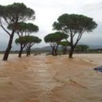 EMERGENZE CLIMATICHE E STRESS
